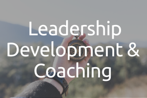 leadership development and coaching